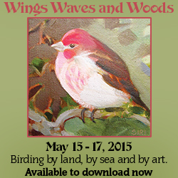 Wings Waves & Woods 2015