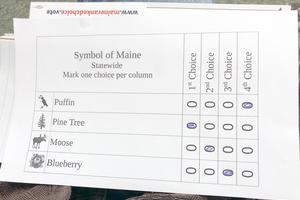 Sample voting