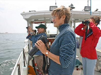 Dr. Susan Shaw of MERI