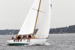 The Falcon in the Castine Classic