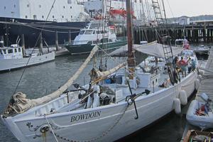 The schooner Bowdoin