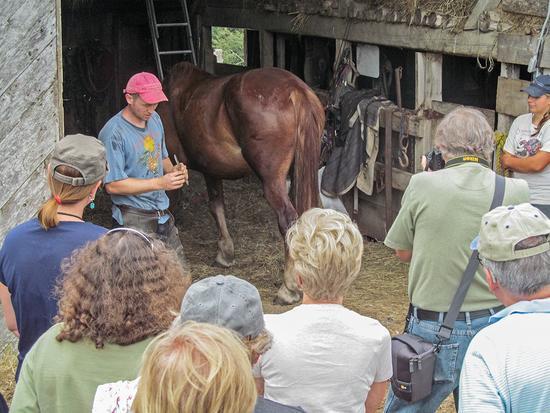 Drew Birdsall of Horsepower Farm