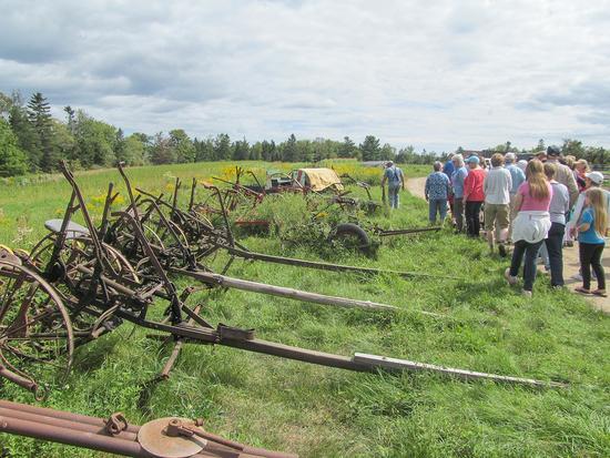 Cultivators on Horsepower Farm