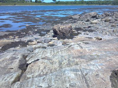 Glacial Striations in Maine