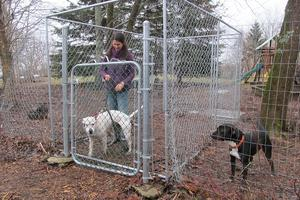Peace Ridge Sanctuary's dog run