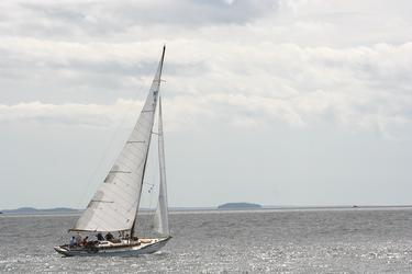 Race winner 'Falcon,' skippered by John Gardner