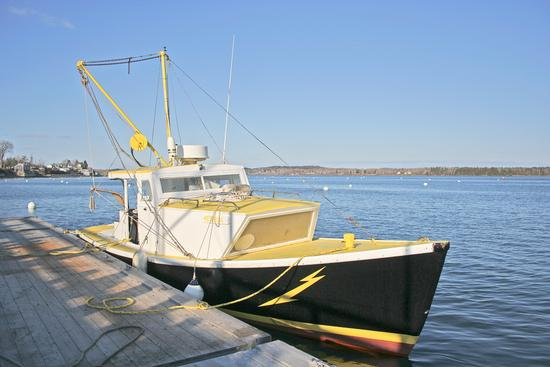 Lobstermen are few in Castine