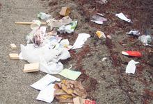 Trash problem on the island