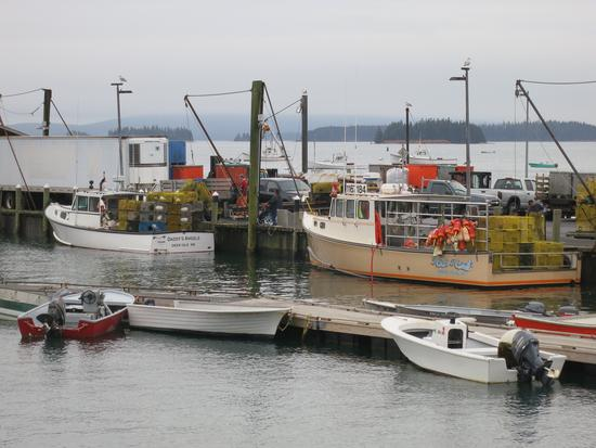 Maine's 2016 commercial fishery