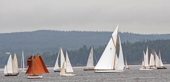 Yachts wait for the race start off Torrey Island.