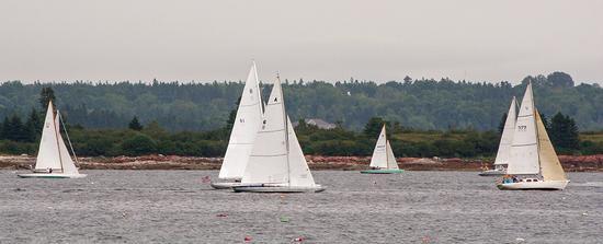 The Falcon raced in all three regattas