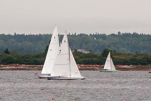 The Falcon raced in all three regattas