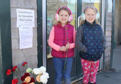 Carnations for Quarantine