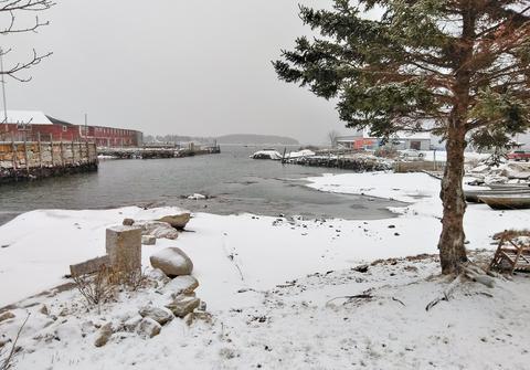 Winter wonderland provides silver lining for bitter cold
