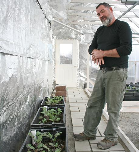 Wicking beds for pepper plants