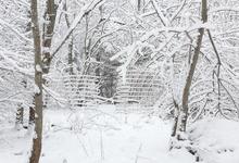 Look, it's winter!