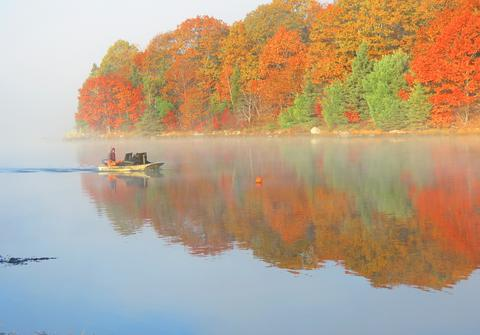 Early morning on the Bagaduce River