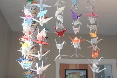 1,000 storks