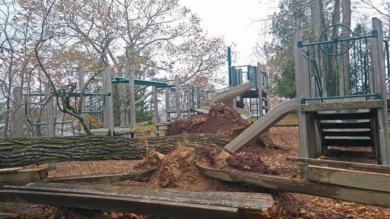 Blue Hill Town Park playground