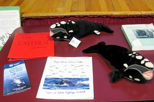 Whale rights student group the Calvineers