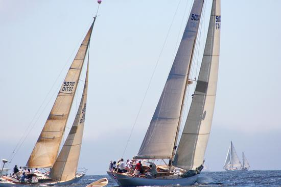 Vortex and Anna race in the Castine Classic