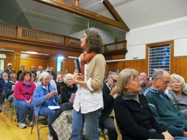 Julie Van der Graaf speaks at Castine's special town meeting