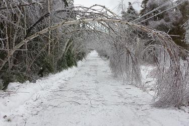 Ice arch caused by ice storm in Castine