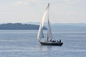 Falcon in the Retired Skippers Race
