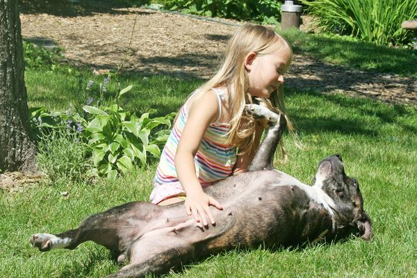 Ava Tessier with a rescued pit bull at Peace Ridge Sanctuary in Penobscot