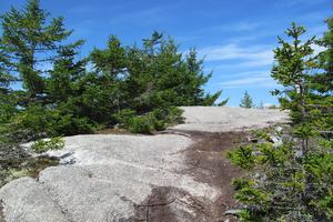 Rocky outcrop at Barred Island Preserve