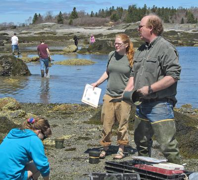 Professor Brian Beal and High School students study clams