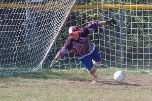 DISHS soccer goalie Ethan Shepard