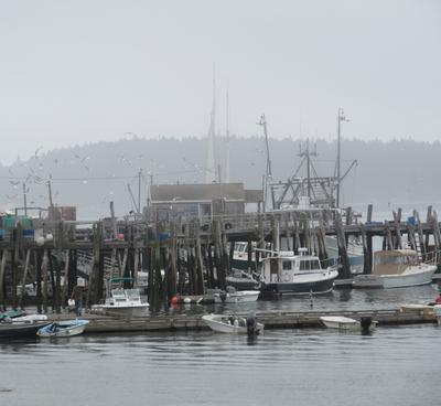 Thick fog on the fish pier