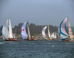 Camden Classic racers on view off Stonington