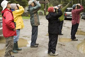 Birdwatchers attend a birdwalk