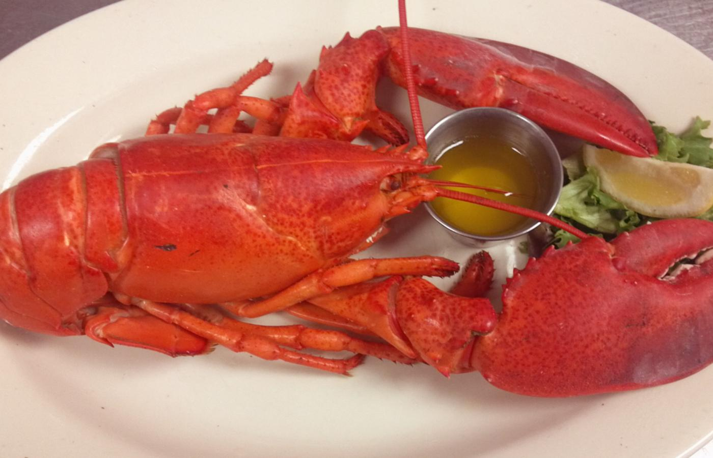 Lobster Dinner Long Island