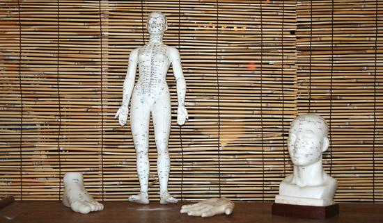 Chinese acupuncture and acupressure models