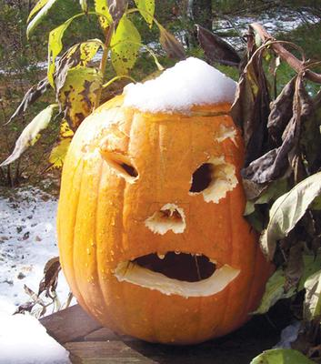 Jack o'lantern in early snow