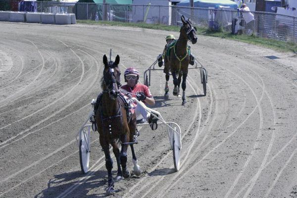 The harness races drew a crowd to the grandstand at the Blue Hill Fair 2013