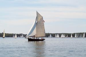 Vela racing in the Eggemoggin Reach Regatta