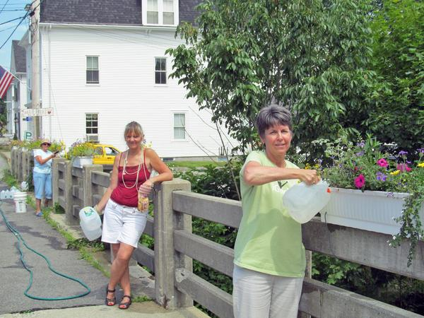 Members of the Blue Hill Garden Club