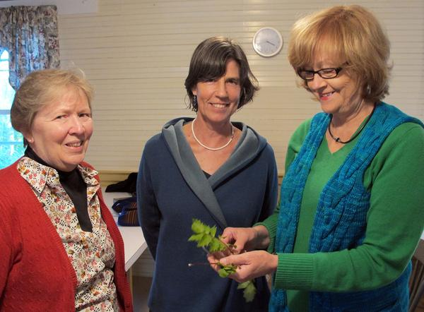Blue Hill garden club members