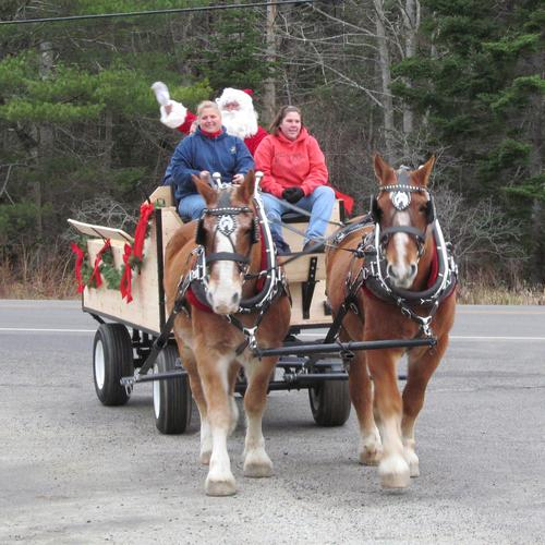 Santa arrives on the horse-drawn carriage