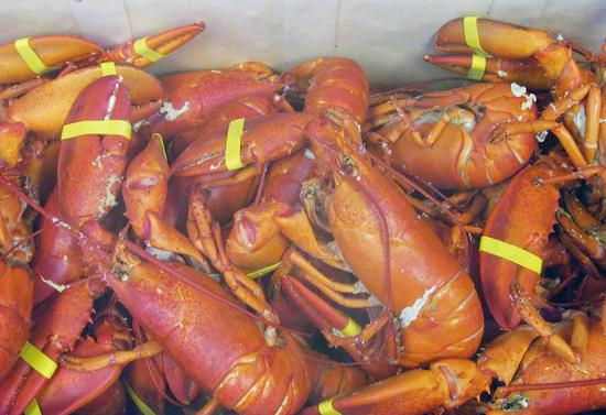 Brooksville Odd Fellows serve up lobster