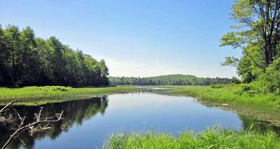 Wight Pond, newly conserved land
